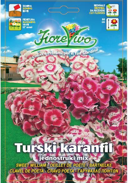 Turski karanfil jednostruki mix