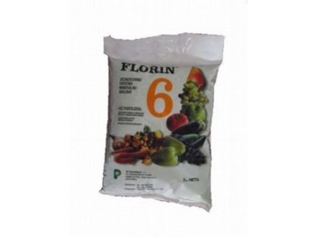 Florin 6