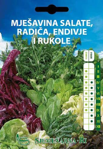Salata, radić, endivija i rukola