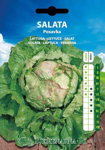 Salata Posavka